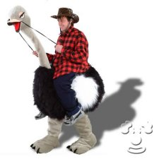 Ostrich with Rider costume idea