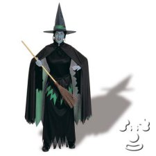 Wicked Witch West from Wizard of Oz Adult Women's costume idea