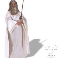 Gandalf the White Adult Men's costume idea