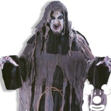 Ghost Ghoul Plus Size costume idea