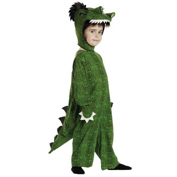 T-Rex Kids costume idea