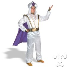 Aladdin Disney Adult Men's costume idea