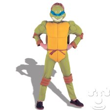 Leonardo Teenage Mutant Ninja Turtle Kids costume idea