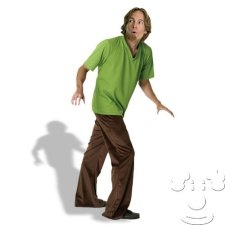 Shaggy Adult Men's costume idea