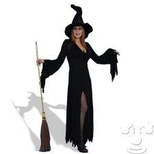 Adult Wicked Witch costume idea