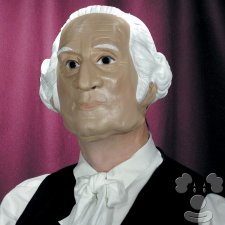George Washington Political President costume idea
