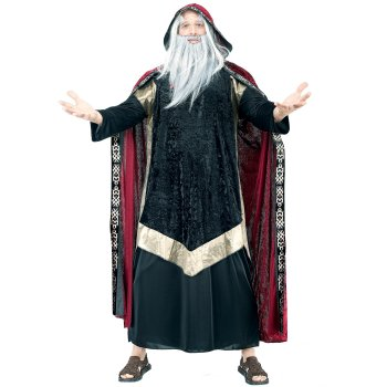 Wizard Plus Size costume idea