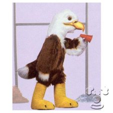 Bald Eagle costume idea