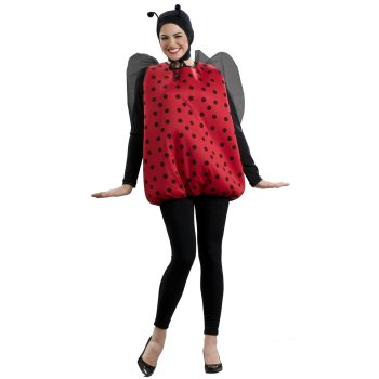 Lady Bug Funny costume idea