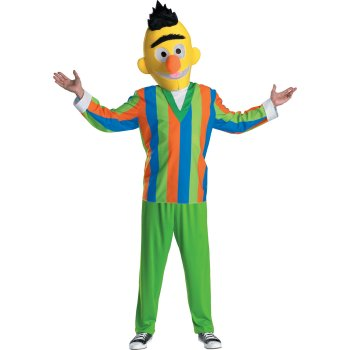 Sesame Street Bert Teen costume idea