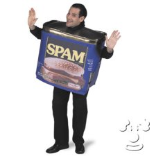 Spam Can Adult Funny costume idea