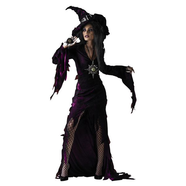 Sorceress Adult Classic costume idea