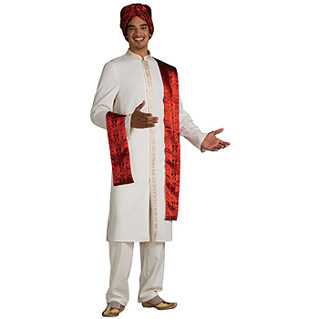 Bollywood Guy Adult Deluxe costume idea