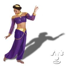 Jasmine from Disney's Aladdin Adult Women's costume idea