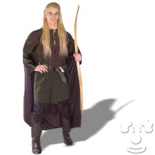 Legolas Adult Men's costume idea