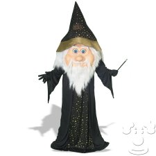 Wizard Adult Funny costume idea