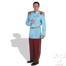 Prince Charming Adult Men's costume idea