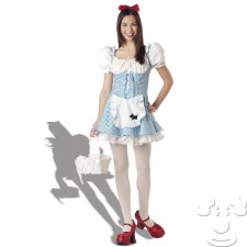 Dorothy From Wizard of Oz Teen costume idea