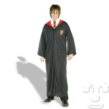 Adult Harry Potter Adult Men's costume idea