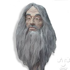 Dumbledore from Harry Potter costume idea