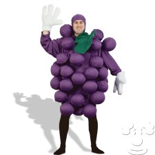 Purple Grapes Adult Funny costume idea