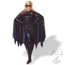 Batgirl Adult Women's costume idea