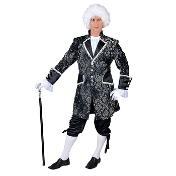Adult Baroque Royal Court Gentleman Deluxe costume idea
